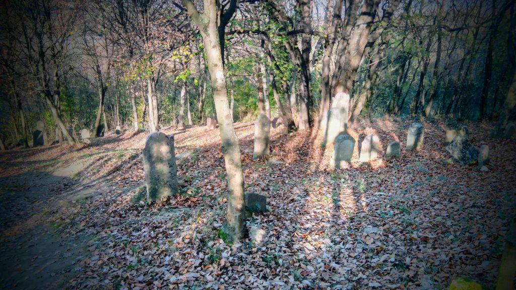 A cseszneki zsidó temető