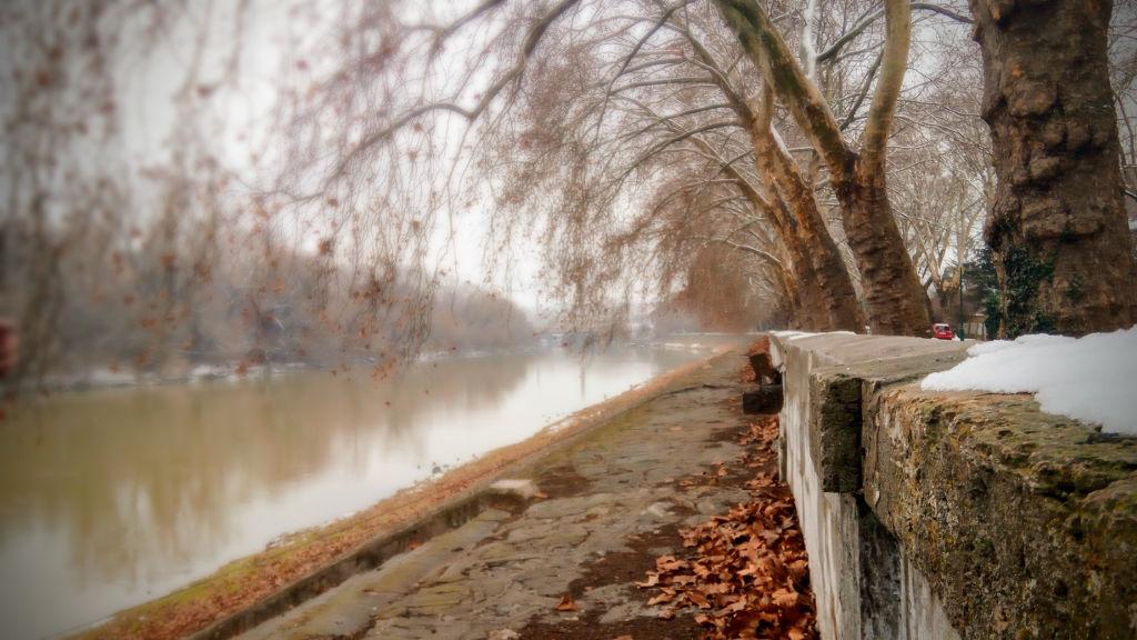 A Dunapart az Óbudai-szigetnél