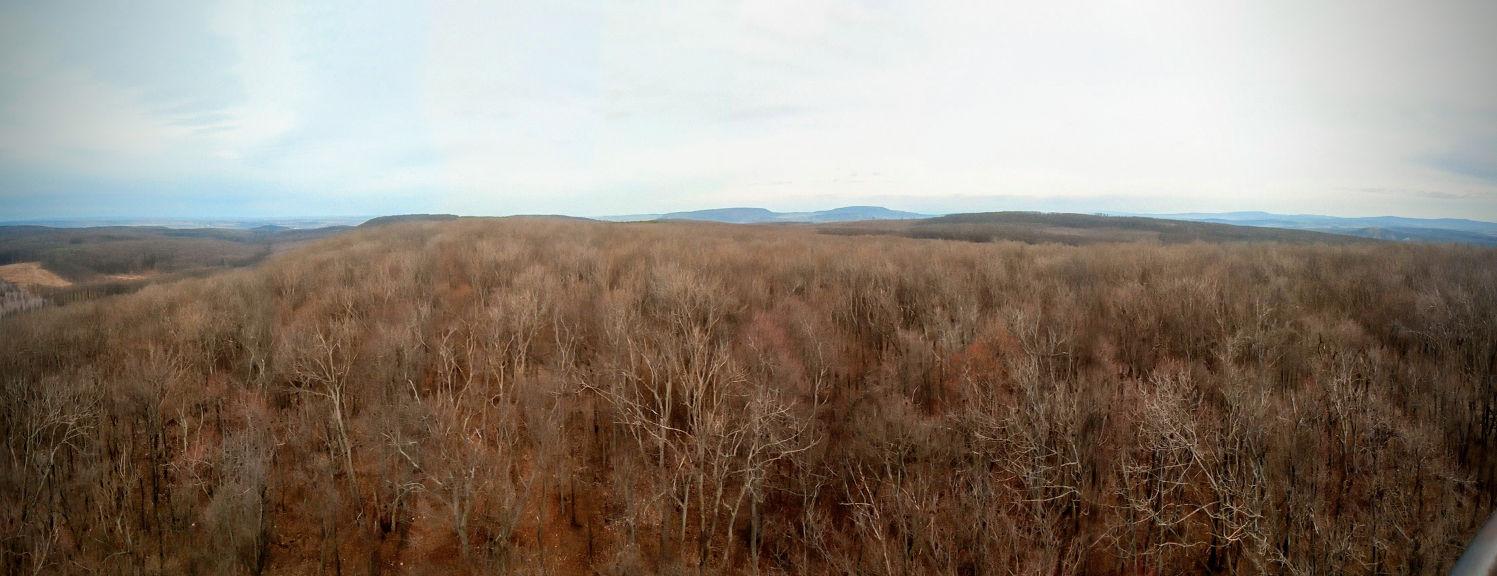 Domesztikált vadon: kilátás a körtvélyesi földmérőtoronyból
