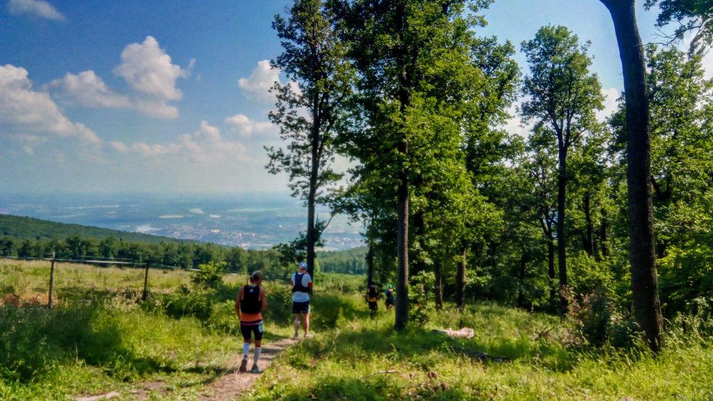 Kilátás Szentendrére a Nyerges-hegyről
