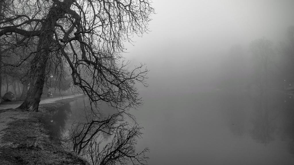 Felsőtárkány ködben
