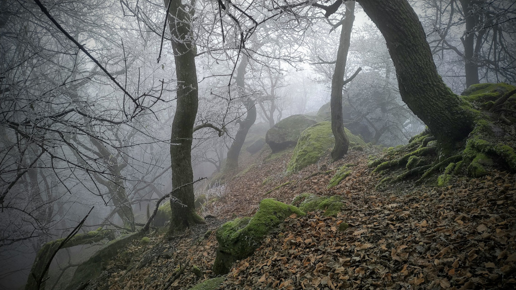 #221 Peaks of Pilis
