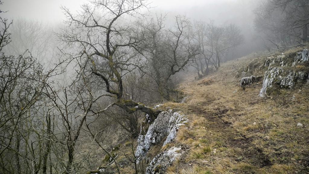 #232 Peaks of Vértes