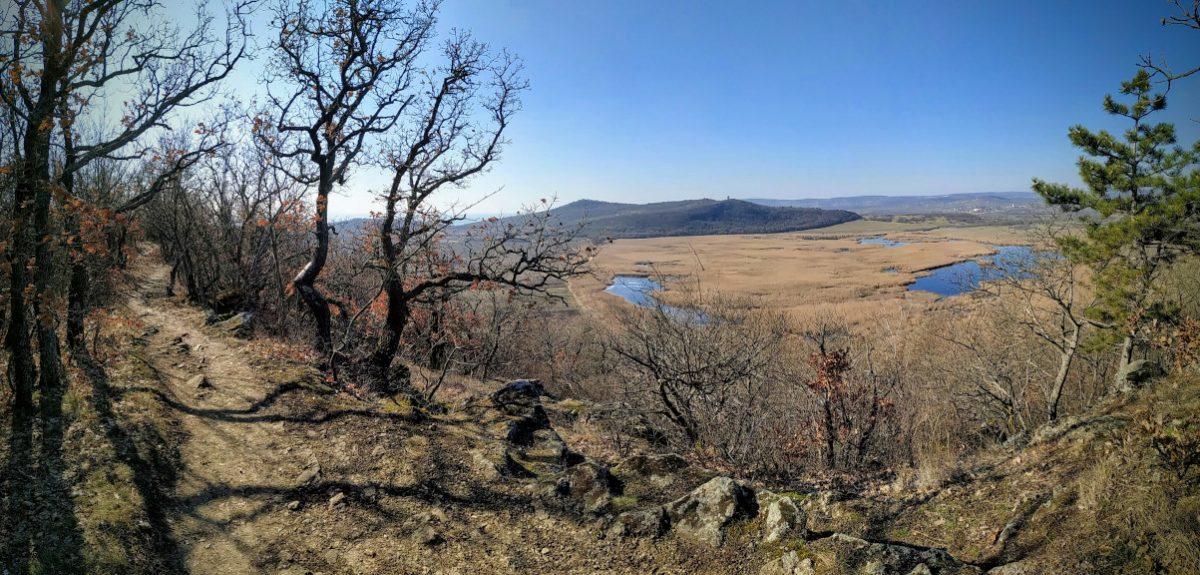 #234 Téli Tihany Trail 15k+10k