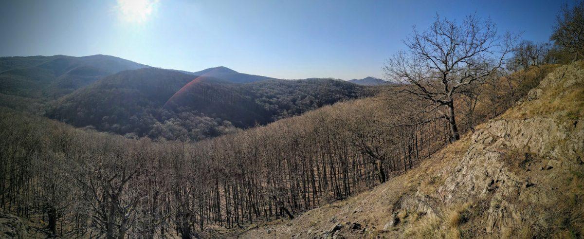 #252 Peaks of Börzsöny